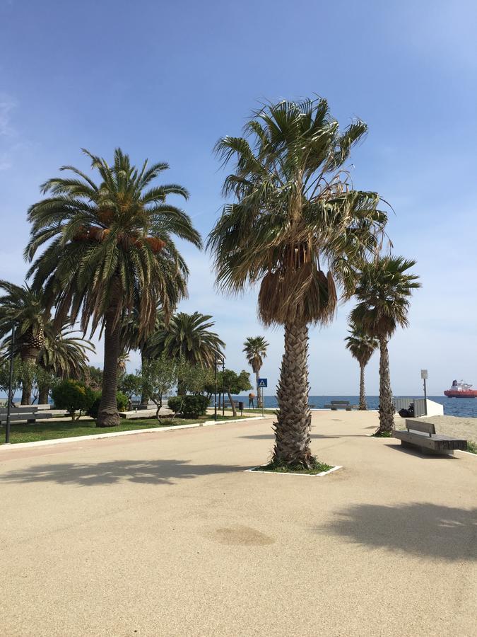 palmen Savona, bloemenrivièra, Italië