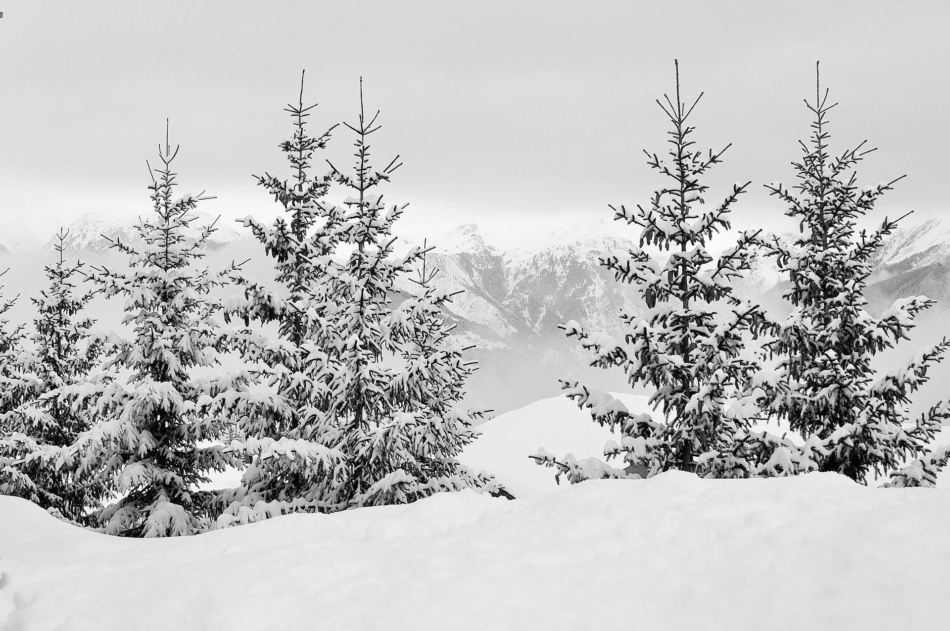 Skiën Ligurië en Piemonte, Italië